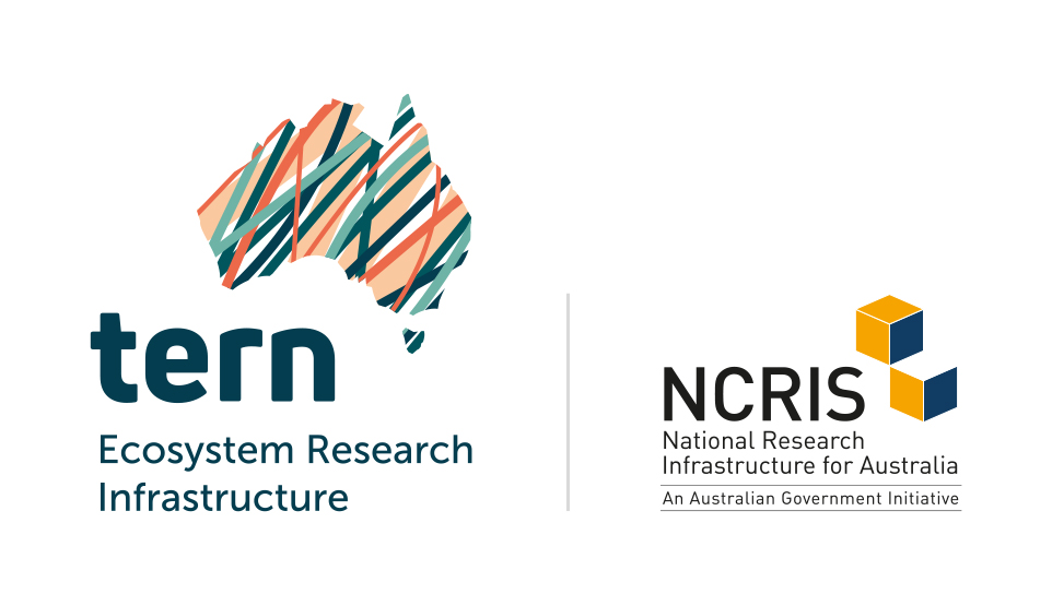 Terrestrial Ecosystem Research Network / National Collaborative Research Infrastructure Strategy